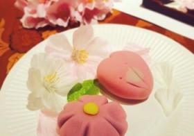 【開催報告】「春の訪れを楽しむ♪ 職人に習う和スイーツ作りと茶話会」の旅☆