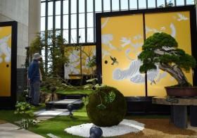 異彩放つロックな盆栽展 淡路・奇跡の星の植物館