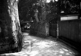 でんみら写真部「江戸の坂×東京の坂」文京編/鷺坂