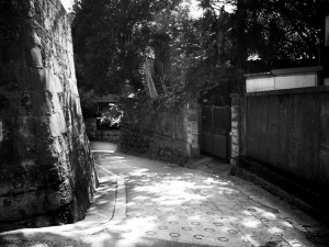 鷺坂 (c)denmira.jp
