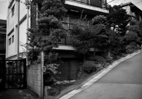 でんみら写真部「江戸の坂×東京の坂」文京編/胸突坂
