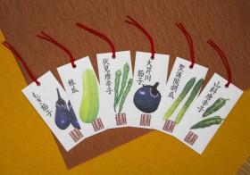 タキイ種苗が『京都ゆかりの厳選野菜』12月から販売開始!