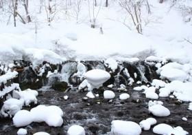 七十二候「水泉動」(しみずあたたかを含む) / denmira blog